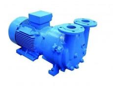 山西2BV水环真空泵