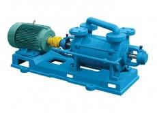 山西2SK-P1系列两级水环真空泵